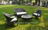 Meubles extérieurs de rotin de PE, présidence de Wicer, meubles de jardin, meubles extérieurs