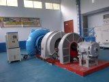 Гидро (вода) малая турбина Frcancis гидроэлектроэнергии Turbine-Generator/