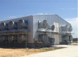 鉄骨構造の家禽は、ニワトリ小屋収容するか、または取除いた