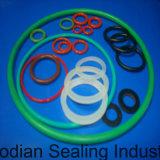 GOST 9833-73 RubberO-ring 021-024-19 bij 20.5*1.9mm met Viton