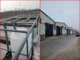 Round più poco costoso Oval Flat/Galvanized Iron Wire/PVC Coated Iron Wire/Stainless Steel Wire Made in Cina Factory
