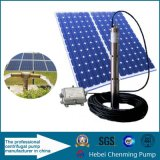 Gelijkstroom 24V Small High Pressure Submersible Solar Water Pumps voor Well