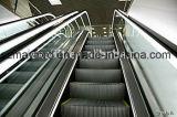 Эскалатор управлением Vvvf высокого качества с сертификатом CE