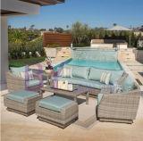贅沢な庭のソファーの柳細工の白い藤の屋外の家具によって470