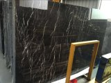 Professionele Leverancier van St. Laurent Marble Slabs Marble Tiles