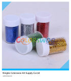 12*11g Glitter Powder per Art e DIY