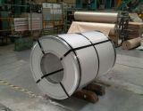 HauptStahlblech-Farbe der qualitätsPPGI beschichtete Stahlring für Buidling Materialien