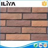Building 物質的な、内壁のクラッディングの石(YLD-20111)