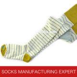 Baumwolle 100% der Frau Coloful Gefäß-Socke (UBM1049)