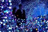 Zeichenkette-Vorhang-Licht der Weihnachtsbaum-Dekoration-LED