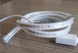 セリウムEMC LVD RoHS保証2年の、LEDの新しい労働者の船