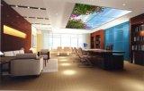 El panel de pared de la luz 600*600 LED de la pantalla plana de RoHS LED del Ce de Moodpanel