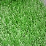 een Lawn voor Football Soccer (SE-50d-518-Cs)