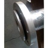 Haltbares Cheaper Ceramic Hose mit Long Working Life und High Bending Flexibility