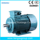 Ye2 AC Three Phase Induction Motor с CE Approved