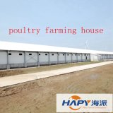 Prefab estructura de acero para la agricultura de aves Casa con diseño moderno