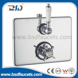 Fator Price Twin Concealed Thermostatic Shower Valve com Oval Brass Plate