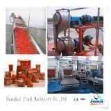 Linha de processamento pequena da pasta de tomate