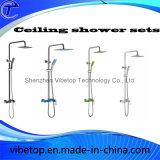ステンレス鋼の手のシャワーが付いている単一のレバーのシャワーセット
