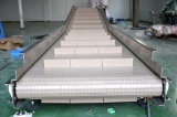 Alimento y Beverage Industry Modular Belt Conveyor
