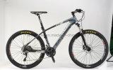 상한 29 인치 탄소 섬유 프레임 산악 자전거