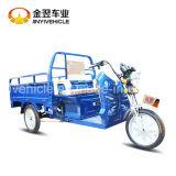 2シートとのPassangerのための電気三輪車