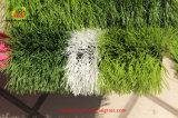 Grama artificial do futebol do futebol para o passo do campo de 5 e 7 e 11 jogadores