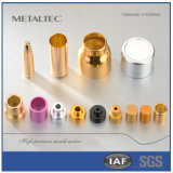 Kundenspezifische Kosmetik zerteilt die hohe Präzision, welche die Teile stempelt und stempelt Die&Mould
