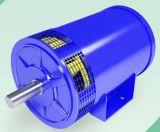 Безщеточный генератор DC (альтернаторы) используемый для Electromobile