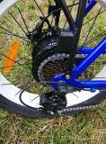 電気バイクを折るFoldable En15194 350WのEバイクのディスクブレーキ電気自転車のリチウム電池ブラシレスモーター脂肪質のタイヤ