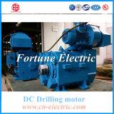 우물 Drlling 전기 DC 모터