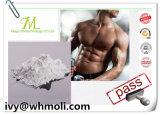 Testosterona material Enanthate CAS 315-37-7 de los productos químicos farmacéuticos