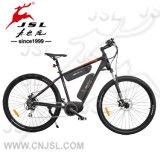 48Vリチウム電池2電池のアルミ合金の電気自転車