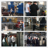 Machine van de Granulator van de Meststof van de Verkoop van de Laagste Prijs van China de Hete met het certificaat van Ce en SGS