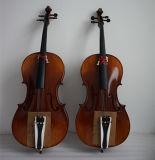 BV / SGS Certificado Artesanal Cello Profesional Avanzado