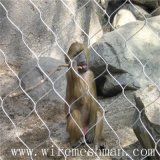 Maille de corde tissée par main d'acier inoxydable pour le zoo
