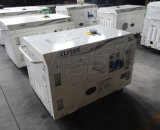 비손 (중국) 빠른 납품 Dg12000se 10kw 10kv 구리 철사 전력 공급 휴대용 디젤 엔진 침묵하는 발전기 1000W