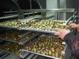 De vacuüm Drogere het Drogen van de Vorst van het Fruit Prijzen van de Apparatuur