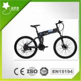 Bici plegable montaña de E con el freno de disco (RSEB-106)
