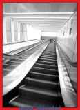 Innen- u. im Freiengebrauch der preiswerten Rolltreppe-- Grad 30 Degree/35 -