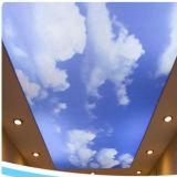 装飾のための印刷を用いる柔らかいPVC伸張の天井のフィルム