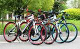 Bici de montaña barata del carbón de la bicicleta de la alta calidad