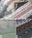 Populäre Baumwoll-/Nylon-/Polyester-Gummiband-Spitze