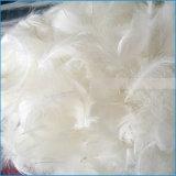 Großhandelsbillig gewaschene weiße Gans-Feder setzen unten Preis fest