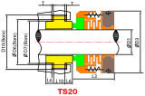 Dichtung Ts20 der Ts-20r (John Crane-Typ 20 20R)