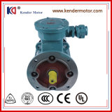 중국 Gloden 공급자에게서 IP55 AC 폭발 방지 전기 모터