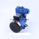 Selbstansaugende elektrische peripherpumpe des Wasser-Gp125