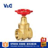 Ая дуктильная запорная заслонка утюга (VG-B10502)