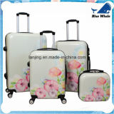 Jeu léger de bagage de fileur de la fleur 4-Piece Hardside de fleur