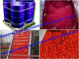 Новый затир томата большого части урожая в безгнилостном мешке
